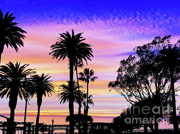 Palm Sunset - No. 1 by Doc Braham